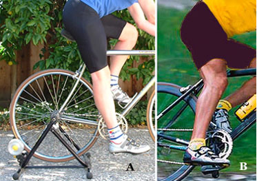 Bike Fit Fitting A Bicycle Seat Adjustment Height Reach Tips By